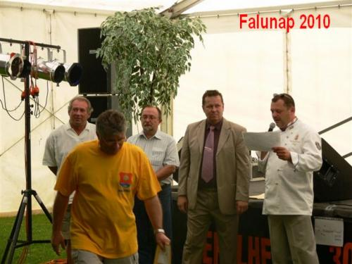 Falunap31