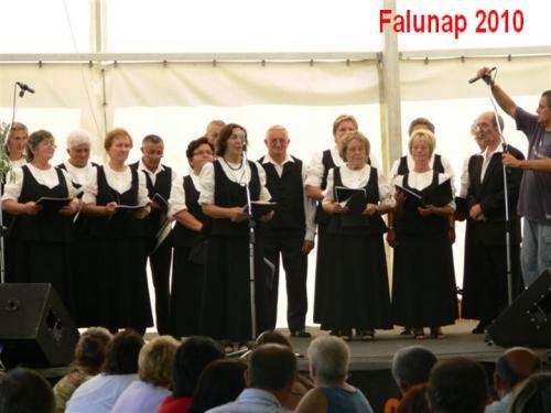 Falunap41